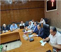 محافظ شمال سيناء يبحث إنشاء أكبر محطة كهرباء بالشيح زويد