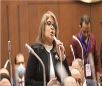 فيبي فوزي: 14 لجنة نوعية تقرهم اللائحة الجديدة لـ«الشيوخ»