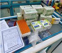 ضبط ٦٣ صيدلية تبيع أدوية مجهولة المصدربـ«الغربية»