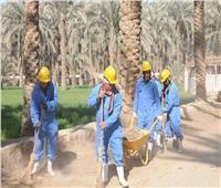 «تنمية المشروعات» يمول مشروعات كثيفة العمالة بـ228 مليون جنيه