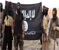 واشنطن: داعش لا يزال يشكل تهديدا لاستقرار العراق