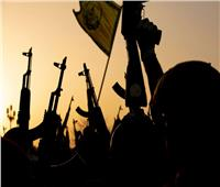 باحث:المخابرات الغربية تتعاون مع الجماعة الإرهابية لتعطيل الإصلاحات التنموية