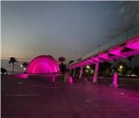 إضاءة مكتبة الإسكندرية باللون الوردي لمحاربة «سرطان الثدي الانتشاري»