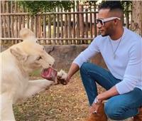 بالفيديو| محمد رمضان يستعرض عضلاته أمام أخطر «حيوانات دبي»