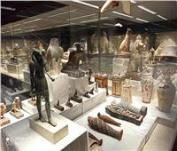 صور | 14 معلومة عن متحف كفر الشيخ قبل افتتاحه