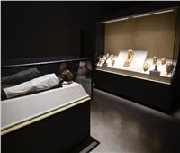 صور| «العنانى» يستعرض التفاصيل الكاملة لافتتاح 3 متاحف بـ 3 محافظات