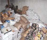 ضبط مسئول عن مخزن بحوزته أكثر من 5 أطنان مواد غذائية منتهية الصلاحية بالإسكندرية