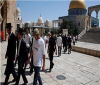 47 مستوطنًا إسرائيليًا يقتحمون المسجد الأقصى
