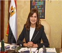غدًا.. بدء المرحلة الثانية لانتخابات مجلس النواب للمصريين بالخارج
