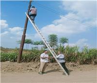 إستجابة لشكاوي المواطنين.. أعمال صيانة لأعمدة الكهرباء بطرق طوخ