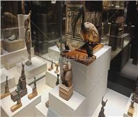 كنوز «متحف كفر الشيخ» بالفيديو والصور