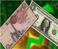 زيادة سعر الدولار أمام الجنيه المصري في البنك المركزي اليوم 2 نوفمبر