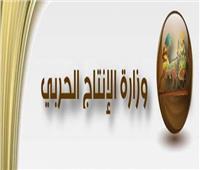 مستشار وزير الإنتاج الحربي يستعرض إنجازات الوزارة في عيدها الـ66