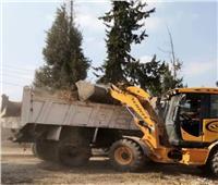 صور| رفع 40 طن مخلفات وتطهير المدارس بالإسماعيلية