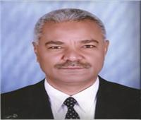 تعيين حسن نور رئيسًا لقسم الآثار الإسلامية بجامعة سوهاج