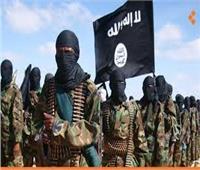 «العراق» داعش يعدم مهندسا يعمل لدى منظمة أممية في قضاء الرطبة