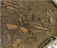 «بدون أطراف».. لغز جثة طفل مدفون منذ 8 آلاف سنة