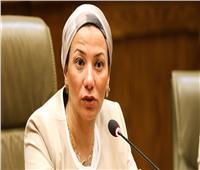 انتخابات النواب 2020 | وزيرة البيئة تدلي بصوتها في مصر الجديدة