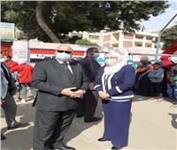 انتخابات النواب 2020| محافظ القاهرة يتفقد لجان العاصمة