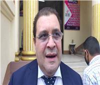 انتخابات النواب 2020   هشام الحاج علي: المشاركة الإيجابية تجسد بناء الدولة الوطنية .. فيديو