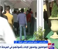 انتخابات النواب 2020 | «رانيا يحيي»: المرأة المصرية الأيقونة فى كافة الاستحقاقات الانتخابية