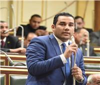مؤشرات أولية غير رسمية.. أحمد علي يحصد مقعدا بالمرج بـ«30 ألف صوت»