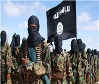 اعتقال 4 من إرهابيي «داعش» في نينوي شمالي العراق