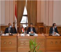 تعاون بين مصر والسعودية في مجال تطوير نظام العمل الدبلوماسى