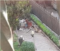القمامة تشوه مظهر حديقة دار العلوم | صور