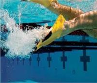 محافظ جنوب سيناء يشهد فعاليات بطولة الجمهورية للسباحة بالزعانف
