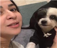 إيمي سمير غانم حزينة لوفاة كلبها! .. والجمهور يواسيها