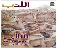 لغز مدينة شالى الغامضة على صفحات «أخبار الأدب»