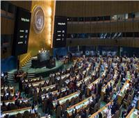 الأمم المتحدة تعتمد قرار مصري سعودي يدعم الاستجابة الدولية لـ« كورونا»