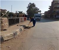 محافظ الغربية يتابع تكثيف أعمال النظافة ورفع تجمعات القمامة