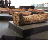 «توابيت سقارة» تزين المتحف المصري في عيد ميلاده الـ118
