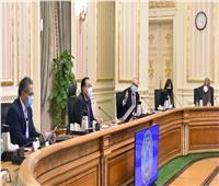 إنفوجراف|«قرارات جديدة».. الحصاد الأسبوعي لمجلس الوزراء