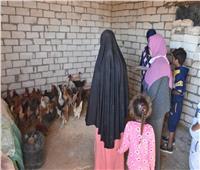 مشروعات صغيرة مدرة للدخل للمرأة البدوية بمطروح