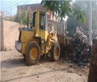 رفع ١٠٠طن مخلفات وقمامة من شوارع المنيا