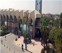 وحدة دعم البحث العلمي بجامعة حلوان تنظم ورشة عمل عن البحوث البينية