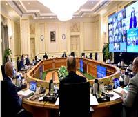الوزراء يوافق على مد مهلة لوائح الوحدات ذات الطابع الخاص لمدة 6 أشهر