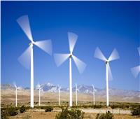 تفاصيل أكبر 3 محطات في العالم لتوليد الطاقة من الرياح على البحر الأحمر
