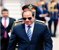 إحباط مخطط تقسيم مصر.. السيسي «المنقذ» ينحاز للشعب في 30 يونيو