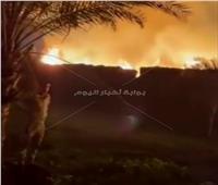 السيطرة على حريق التهم فدان ونصف قش أرز بالدقهلية.. صور
