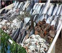 بورصة أسعار الأسماك في سوق العبور اليوم.. و سعر كيلوالوقار٨٠ جنيهًا