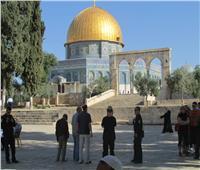 مستوطنون إسرائيليون يقتحمون المسجد الأقصى ويدخلون قبة الصخرة