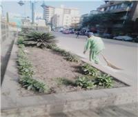 محافظ الغربية يتابع أعمال رفع المخلفات والنظافة اليومية بالقرى والمراكز