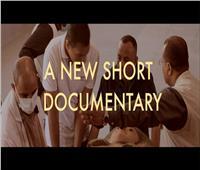 بعد قليل.. وثائقي لـ«بوابة أخبار اليوم» عن اكتشاف سقارة الجديد