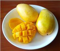 المانجو «ملكة الفاكهة» تقلل التجاعيد وتقوي المناعة