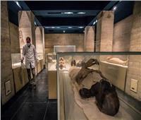 اجتماعات مكثفة لوزارة السياحة والآثار استعدادًا لموكب المومياوات الملكية