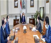 تفاصيل اجتماع الرئيس السيسي بـ«مدبولي ومعيط»